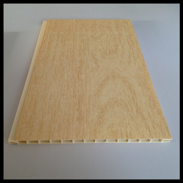 2014 Newest PVC Panel for Door (HN-D001)