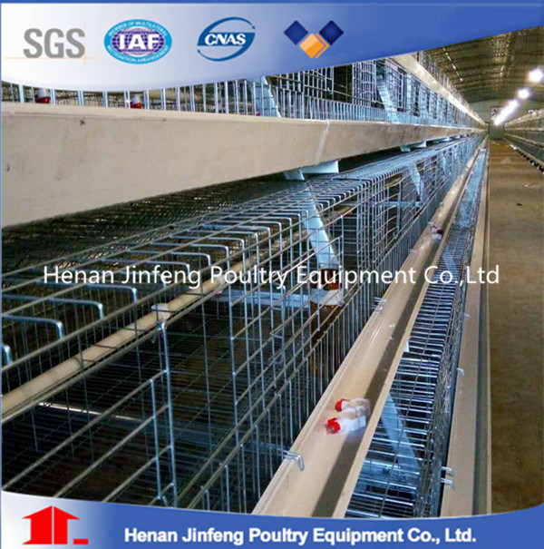 Poultry Farm Baby Chicken Cage