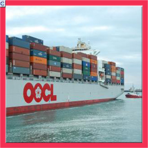 Oocl Ocean Logistics Service From China to Southeast Asia