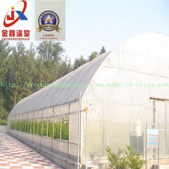 Agricultural Practical Plastic Fim Greenhouse