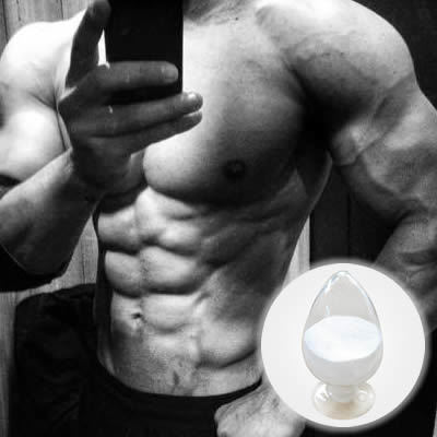 Andriol Testosterone Undecanoate (Test U) Steroid Powder 5949-44-0
