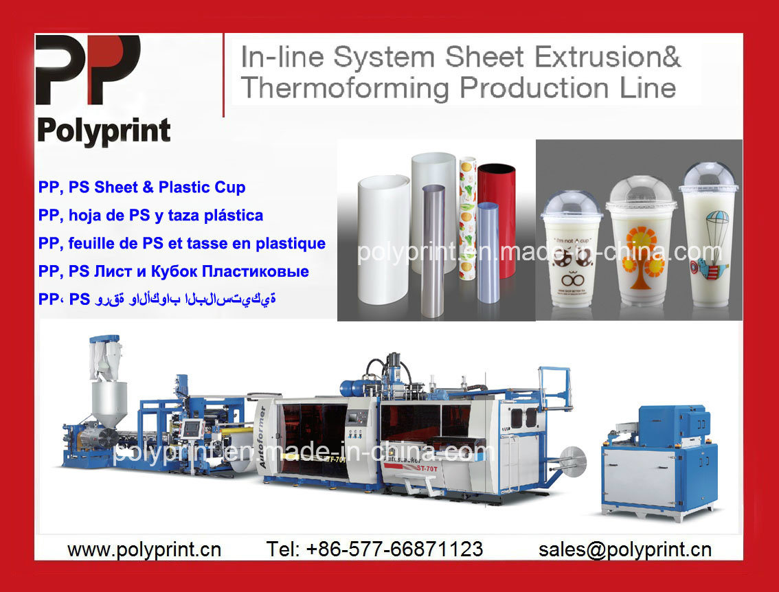 High-Performance Plastic Cup Thermoforming Machine & Extruder for PP/PS/Pet Cup