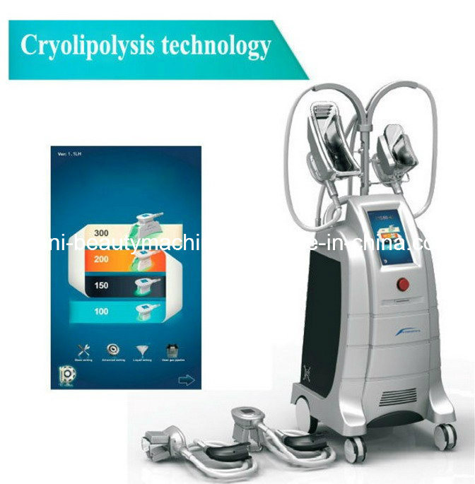 Newest Equipped with Four Working Head Cryolipolysis Liposuction Fat Dissolving Handle Beauty Slimming Machine (ETG50-4S)
