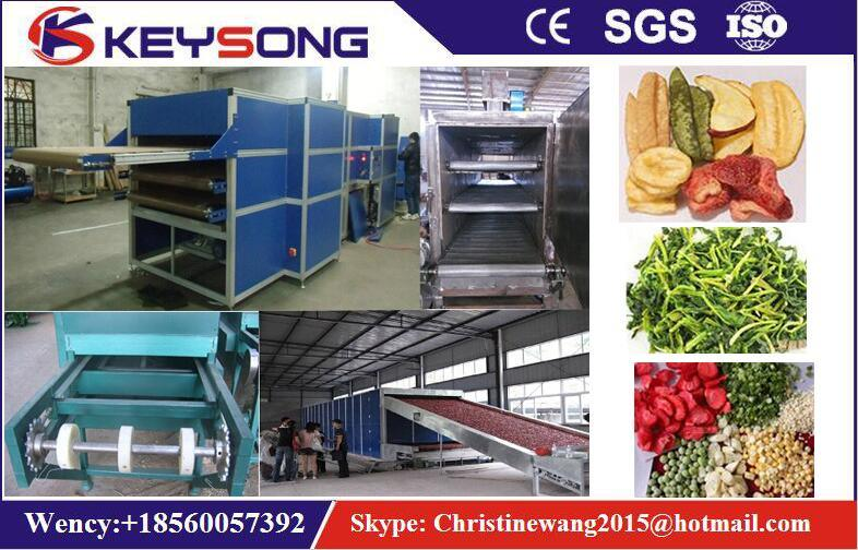 Tunnel Mesh Belt Ginger Chilli Vegetable Fruit Food Dryer