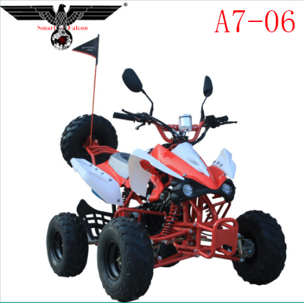 A7-06 Popular Gasoline Motorcycle ATV Quad Scooter with Ce