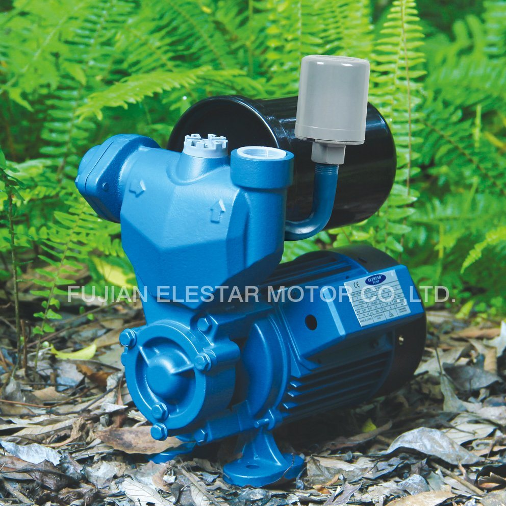 Peripheral Pump Wzb Series 0.5-1HP Clean Water Pumps