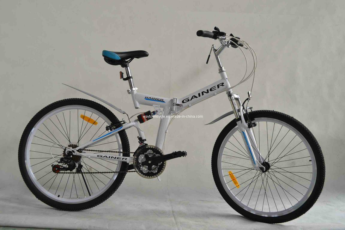 Folding Bike (WT-26401)