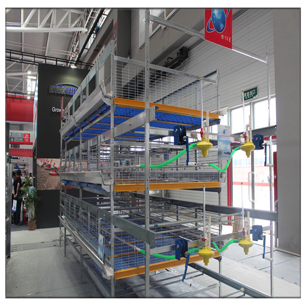 China New Farm House Design Poultry Chicken Broiler