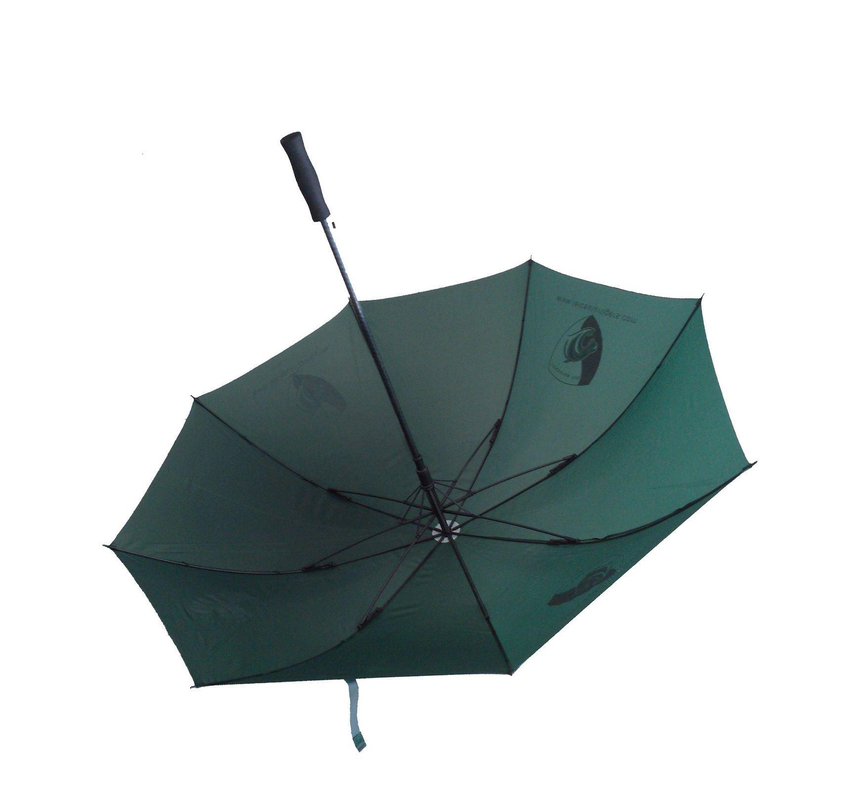 High Quality 30inch Auto Open Windproof Golf Umbrella (AU010)