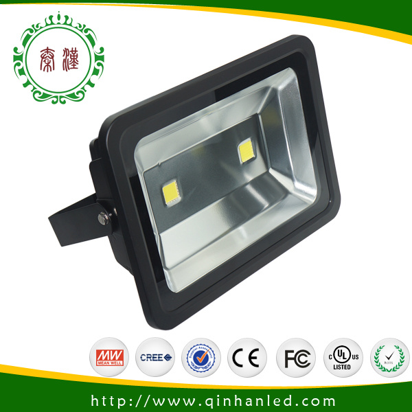 120W Outdoor COB LED Projector Lamp with 3 Years Warranty