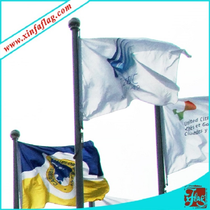 Digital Printing National Flags, Polyester Country Flags