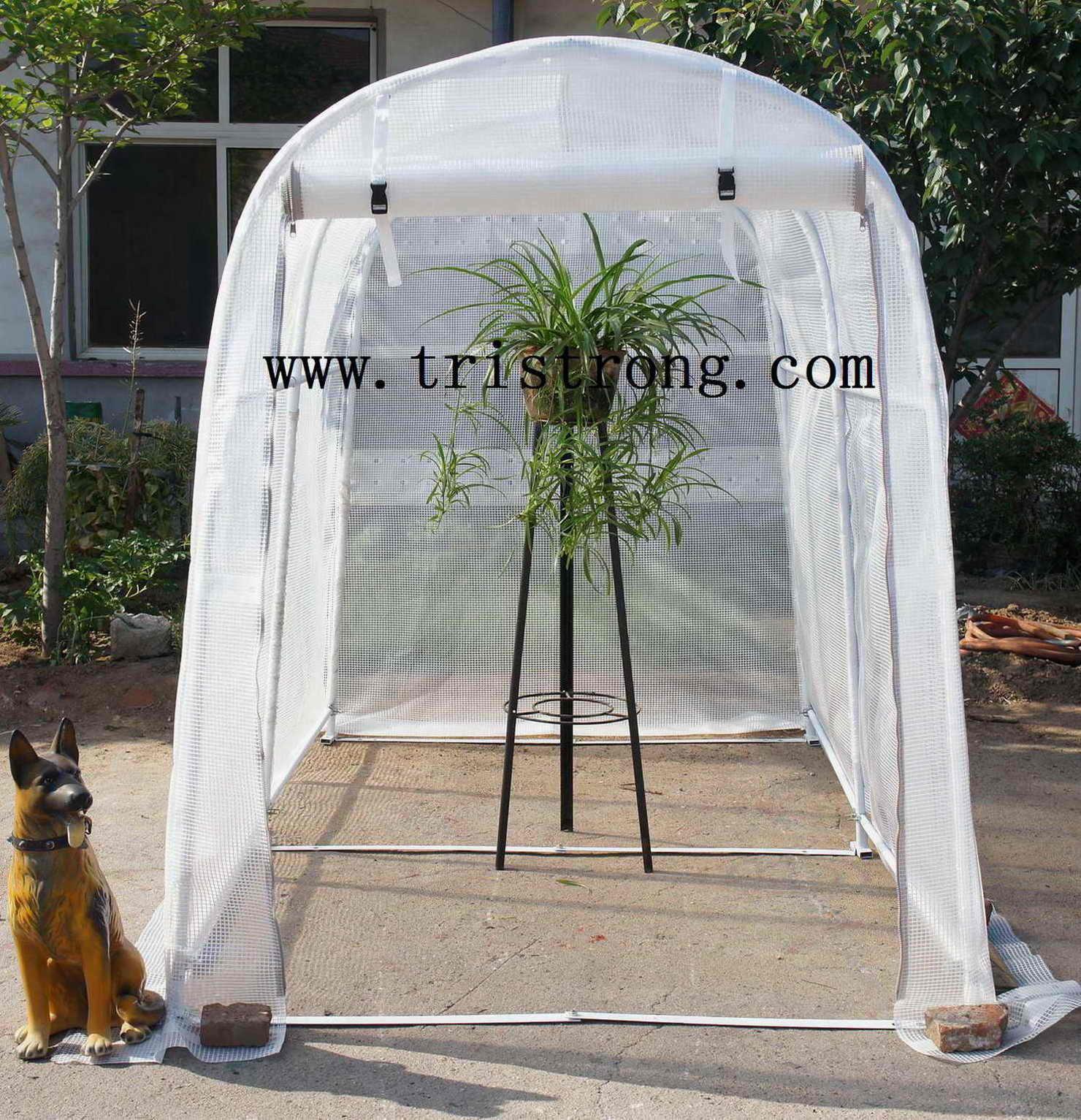 Greenhouse, Garden Shed, Garden Tool (TSU-162g)