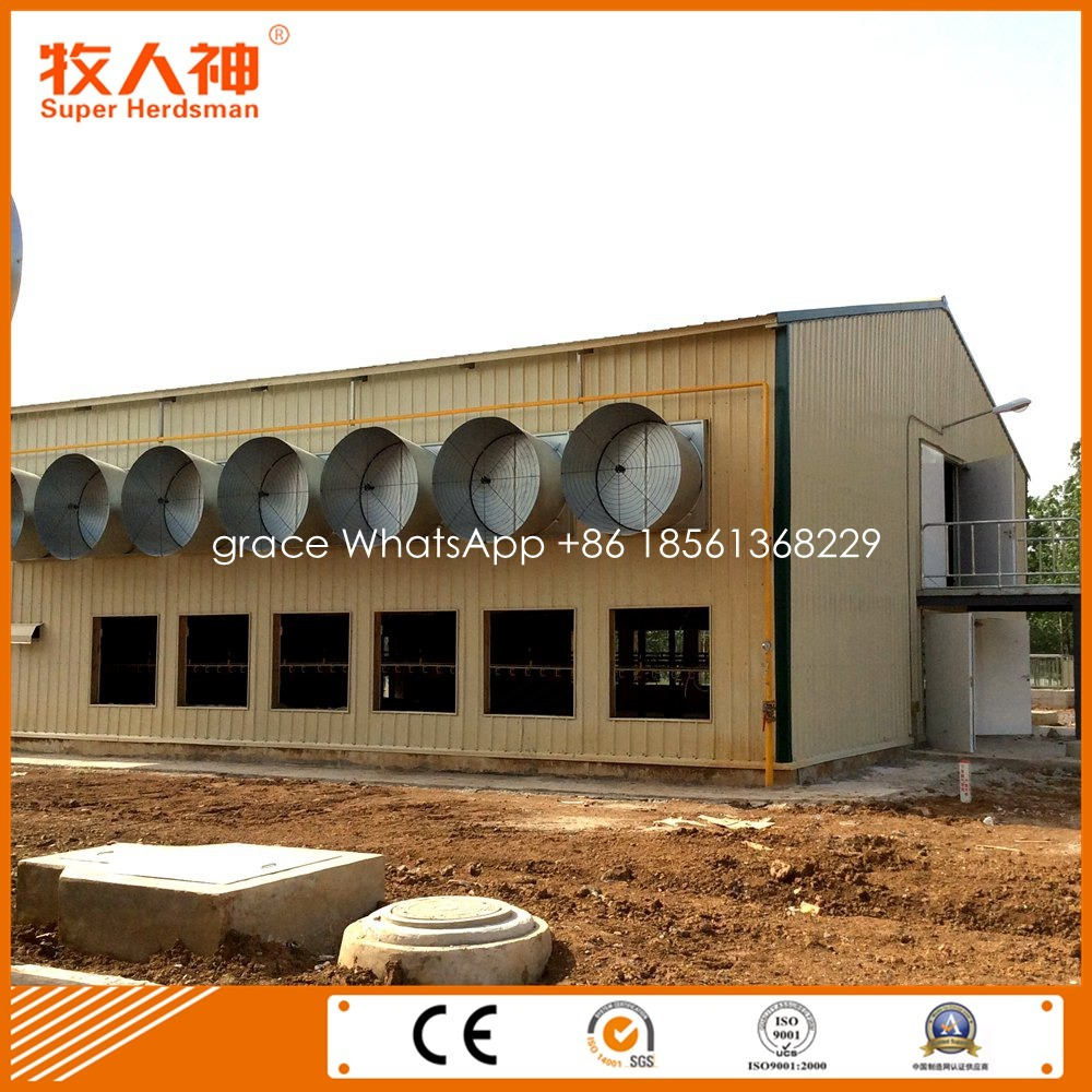 Prefabricated Poultry House From Factory with Farming Equipment for One Stop