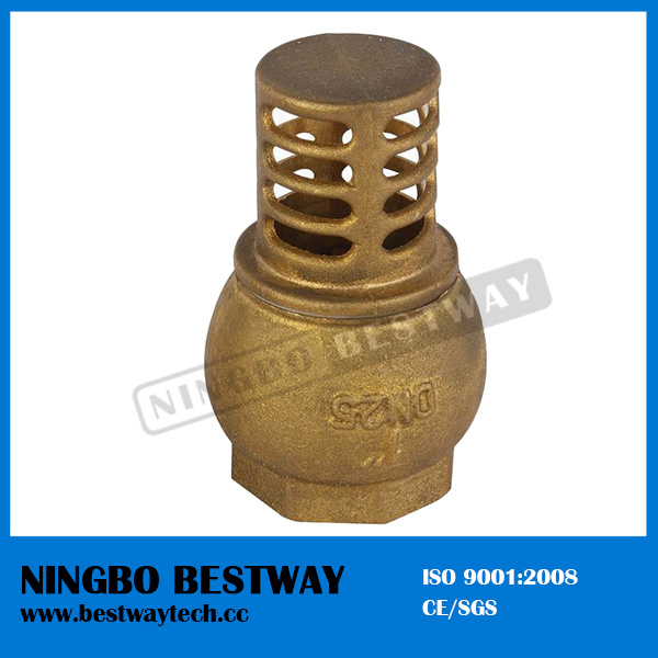 Brass Core Vertical Check Valve
