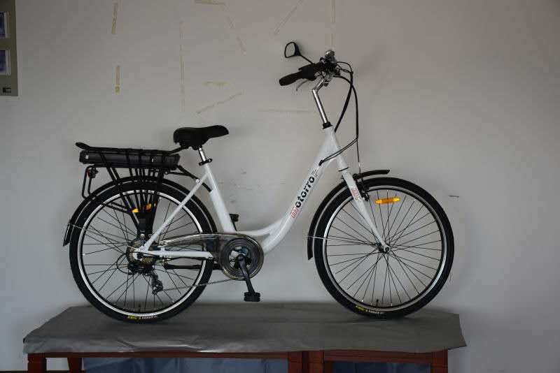 Electric Bike Bicycle with Steel Frame Shelf Battery