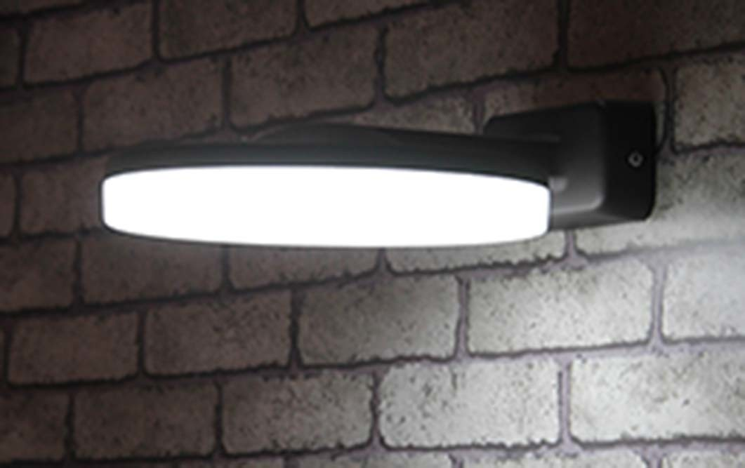Outdoor 14W Ce/RoHS LED Wall Light