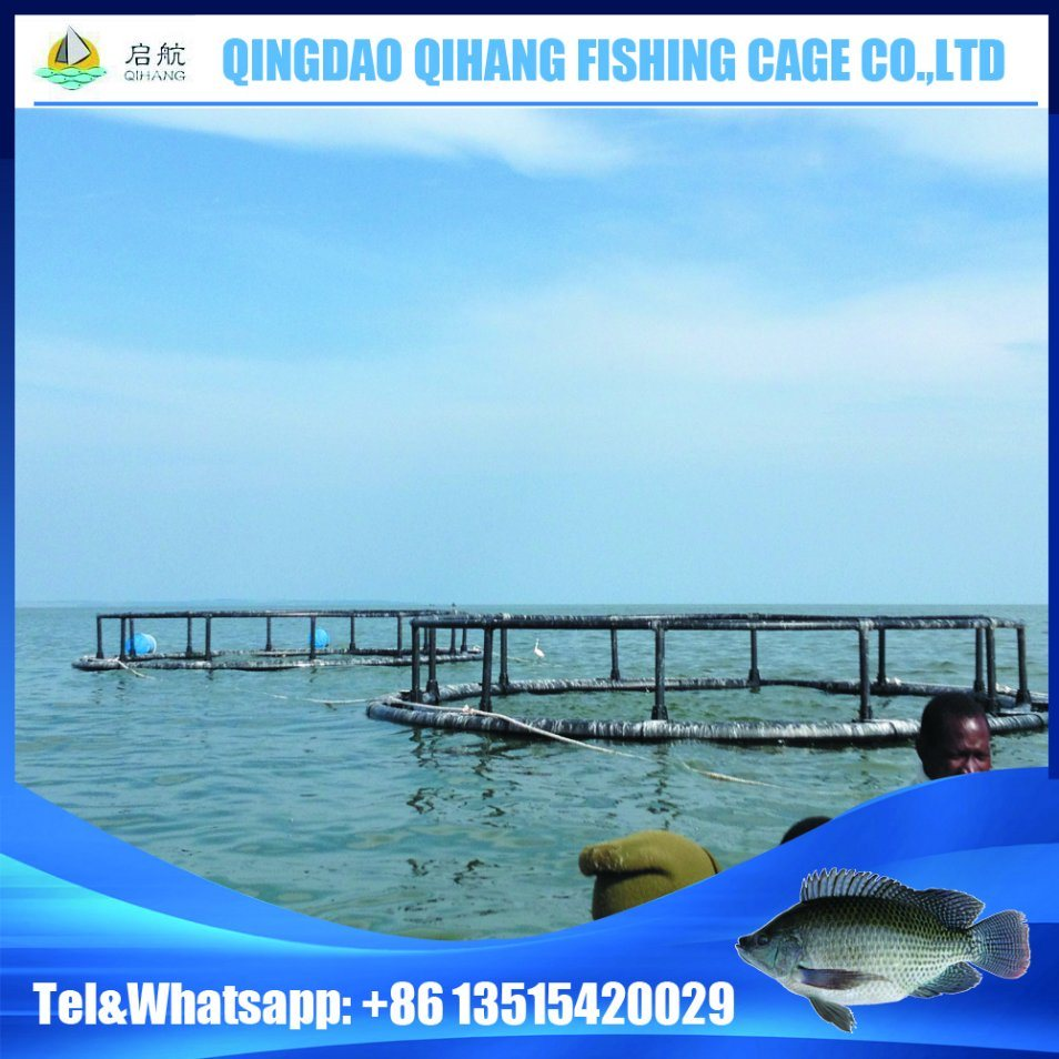 HDPE Pisciculture Floating Fish Farming Cage