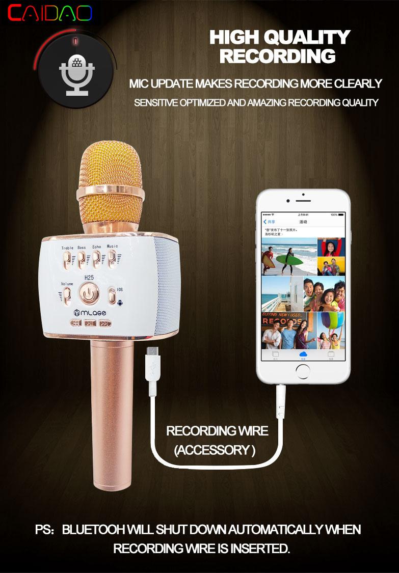 Hot Sale Professional Microphone Handheld Wireless Bluetooth Karaoke Microphone