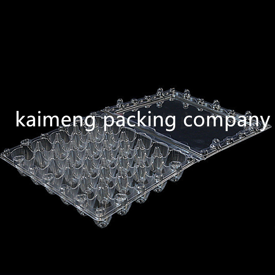 Shanghai Factory Supply Plastic Quail Egg Trays for 15cells Quail Eggs Package (quail egg trays)