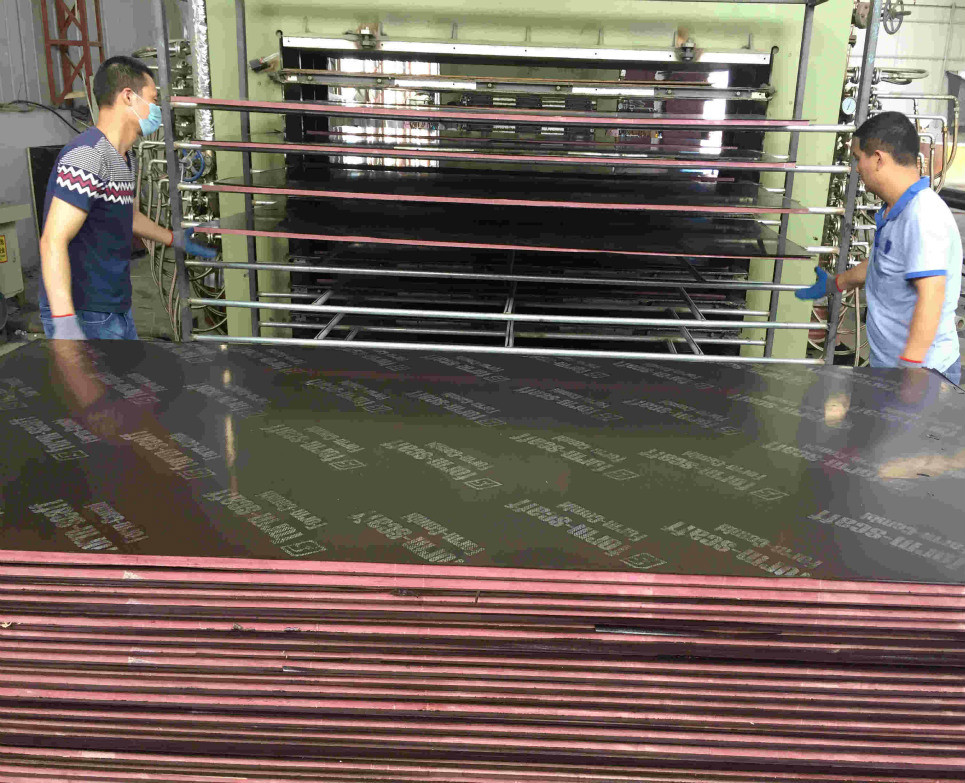 Building Material Wire Mesh Commercial Plywood for Construction