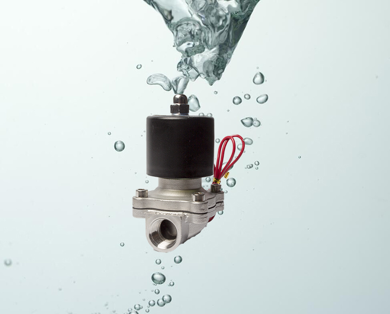 2W160-15 1/2 Inch Stainless Solenoid Valve Hot Water