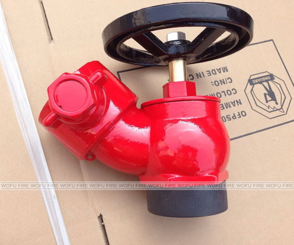 "2.5"" BS Screwed Fire Hydrant Hose Landing Valve"