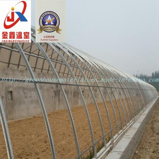 Plastic Film Solar Greenhouse for Vegetable Planting