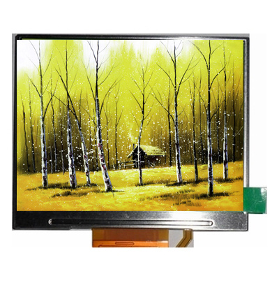 COB Monochrome Graphic Industrial Control LCD Display Panel Graphic LCM