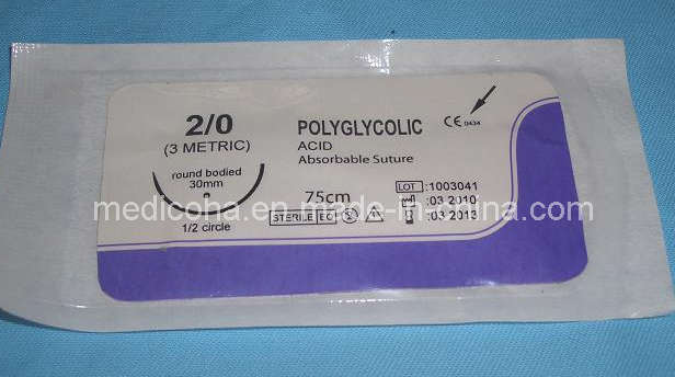 Surgical Suture - Polyglycolic Acid (2#--6 / 0)