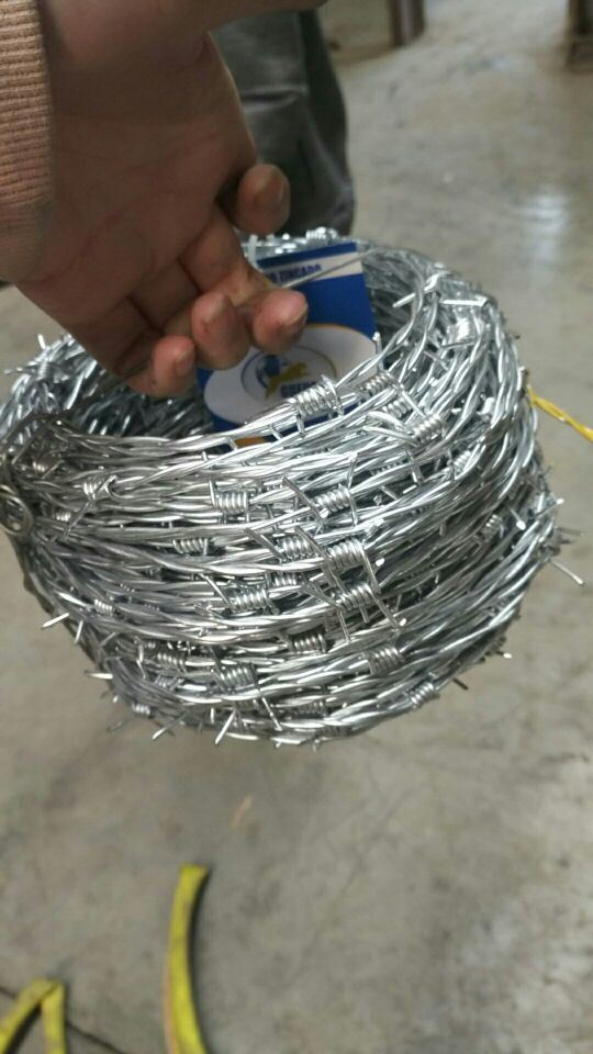 High Quality Galvanized Barbed Wire Fence in Competitive Price