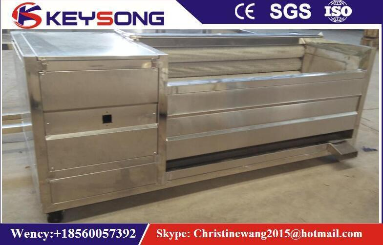 Vegetable Fruits Cleaning Production Line