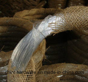 Electro Galvanized Iron Binding Wire/ISO9001 Gi Wire China Factory