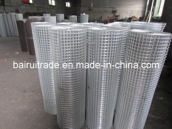 1′′x1′′ High Quality Galvanized Welded Wire Mesh with Low Price