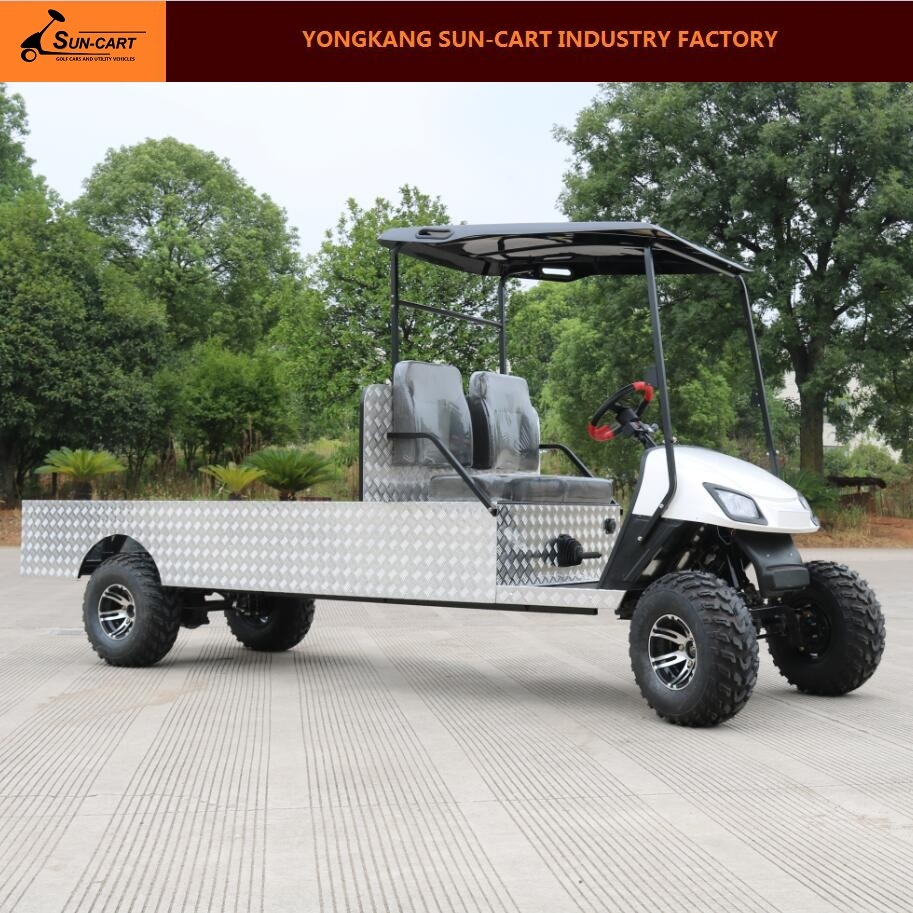 2 Passenger Customized Electric Transport Golf Cart
