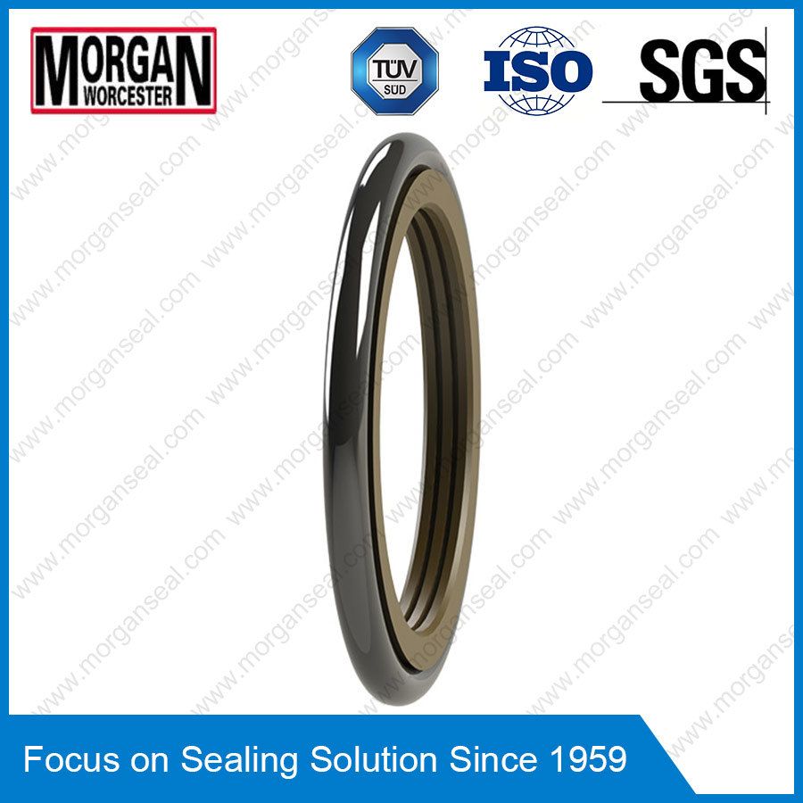 Tg3/M15 Profile PTFE Rubber High Pressure Rotary Shaft Seal