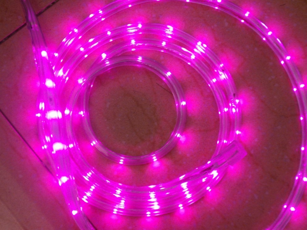 Ce EMC LVD RoHS Two Years Warranty Pink Rope Light LED Strip (HVSMD-3528-60)