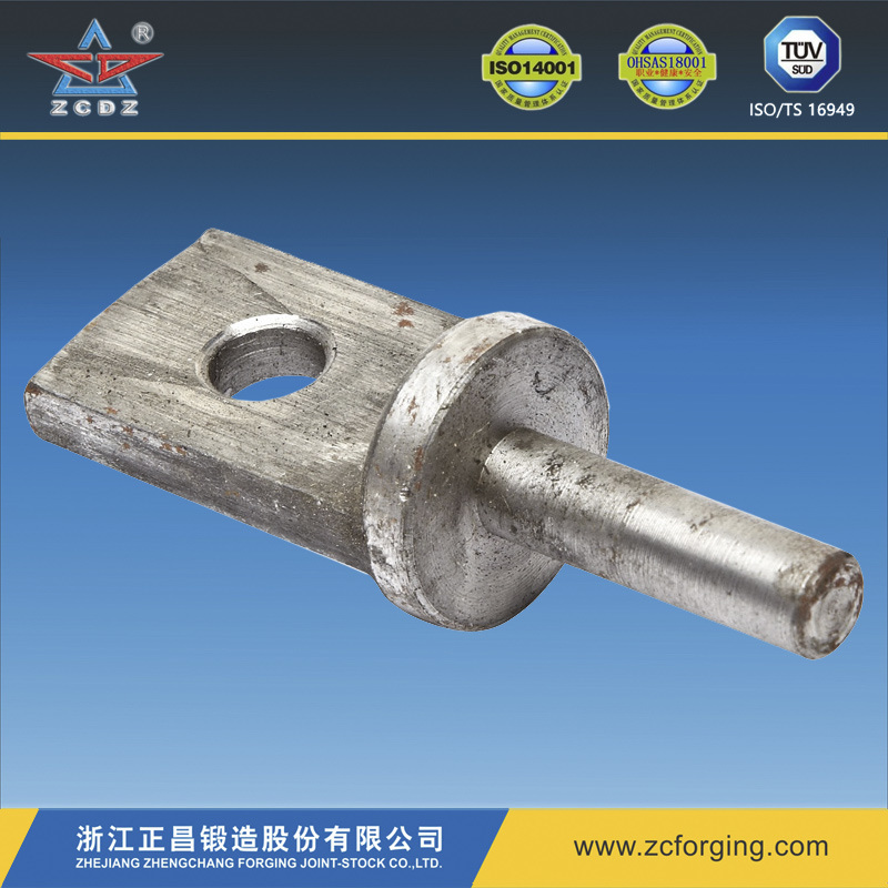 OEM Forging of Hot Forging/Steel Forging/Metal Forging