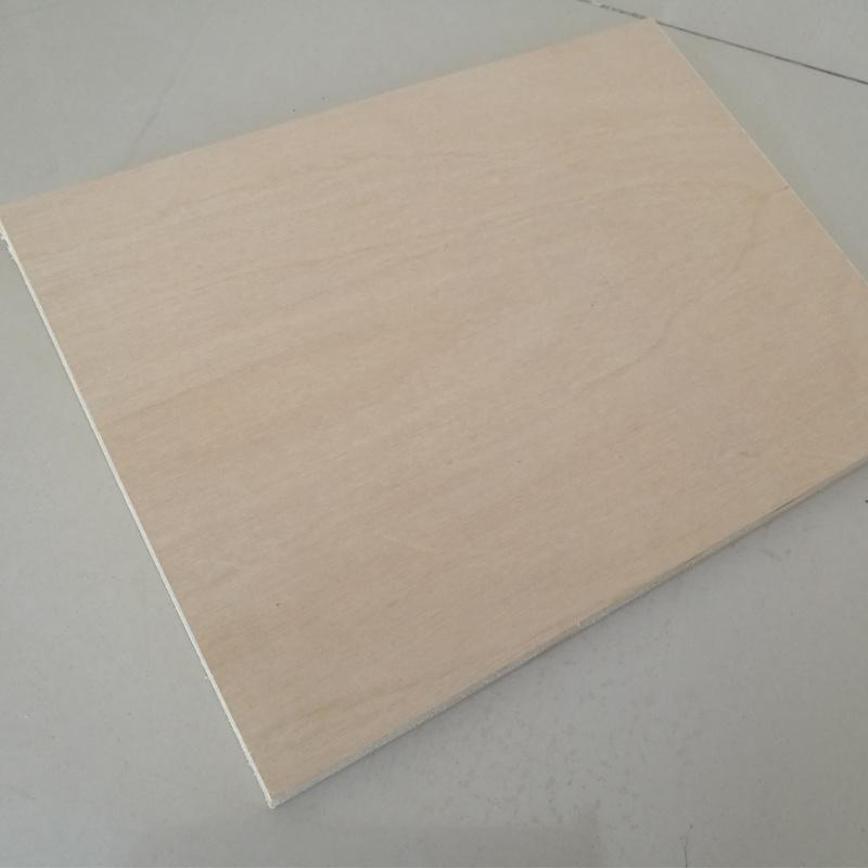 White Birch Plywood Poplar Core Plywood C/D Grade Carb2 Glue