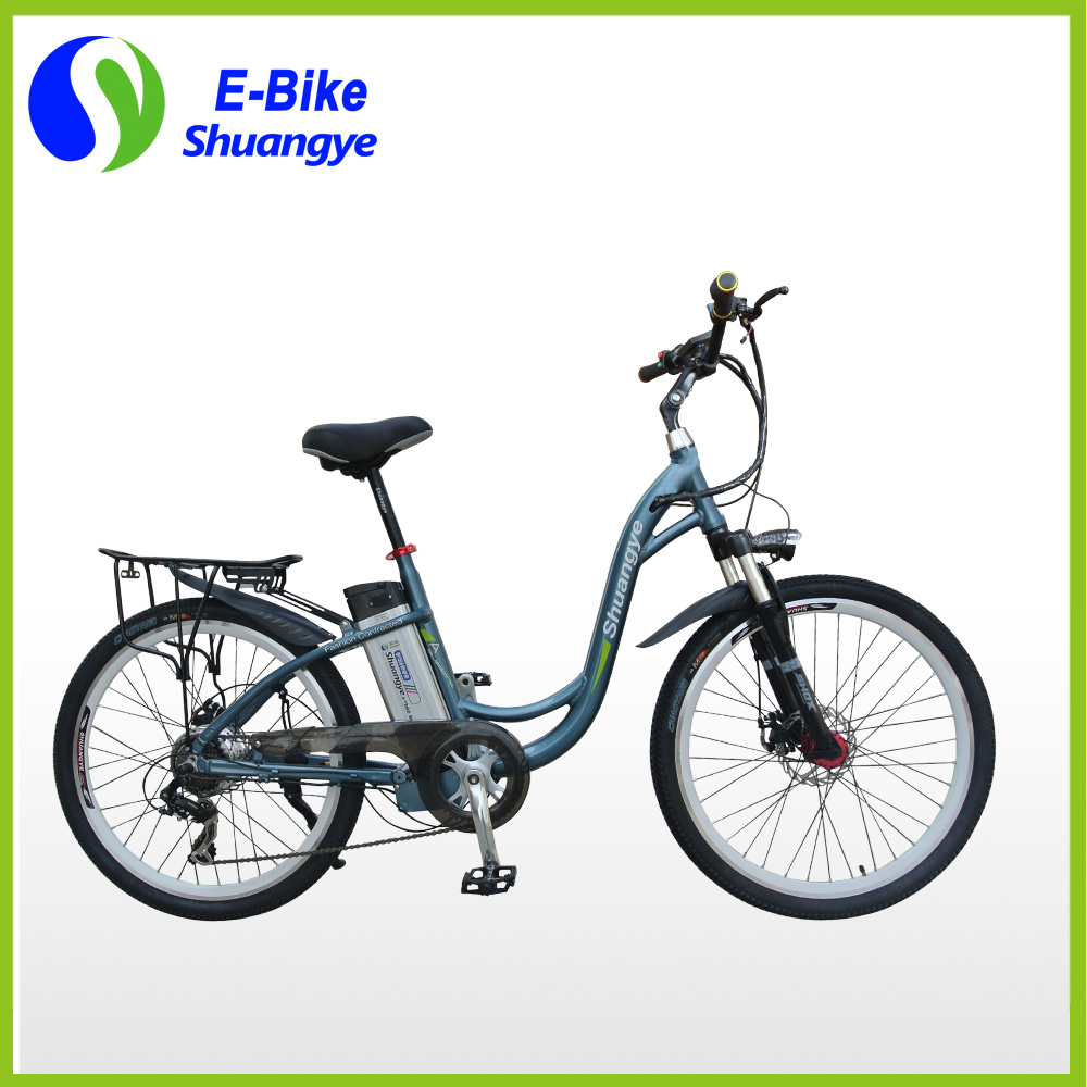 CE Approval 2 Wheel Electric Bicycle with Brushless Motor