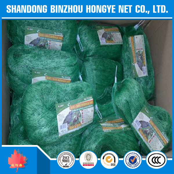 Agricultural Use Anti-Insects Anti-Bird Wire Net