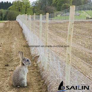 Hexagonal Fencing Wire Netting for Farm Fence