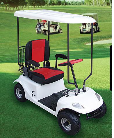 China Electric Mini Golf Cart Oc Gc02 China Golf Cart