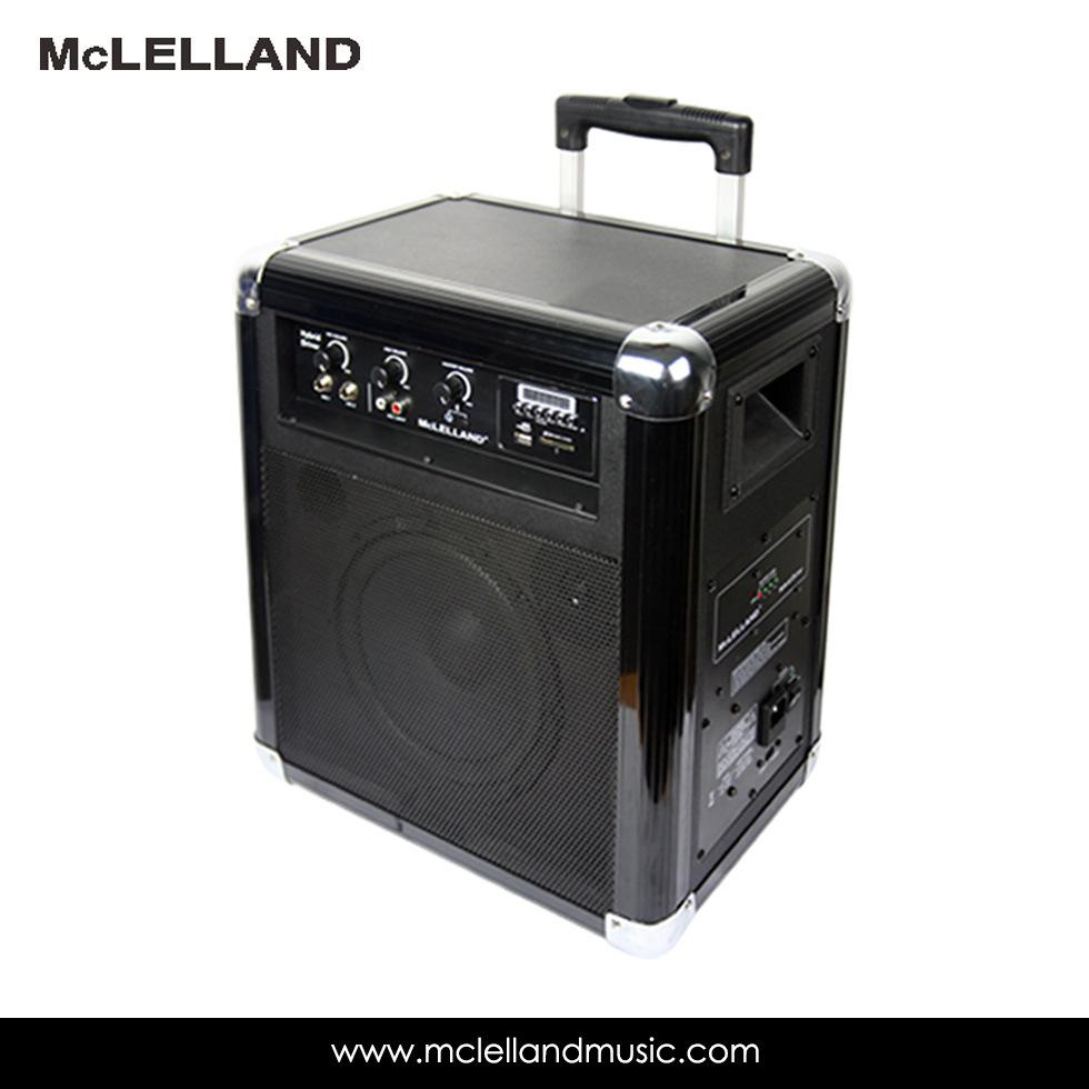 50W Bluetooth Wireless Protable Speaker