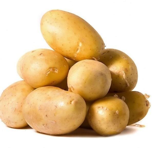 New Crop Potato Vegetable