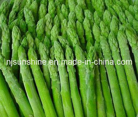 China Frozen Green Asparagus - China Asparagus, Green Asparagus