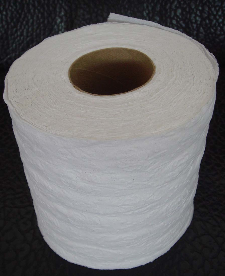 Top 28 recycling toilet paper rolls into jumbo roll for Recycling toilet paper tubes