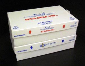 PP Corrugated Plastic Box for Frozen Fish