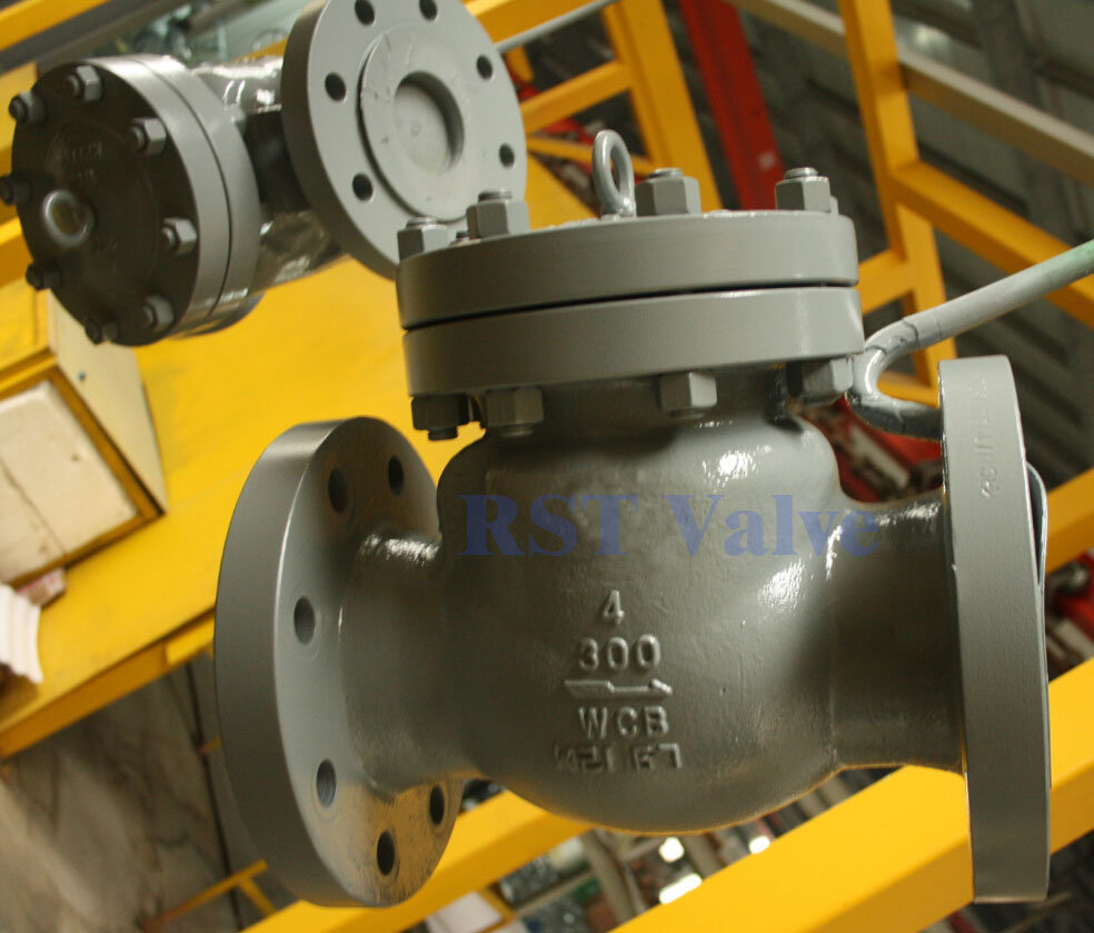 API Flanged Cast Steel Swing Check Valve (150LB~900LB)