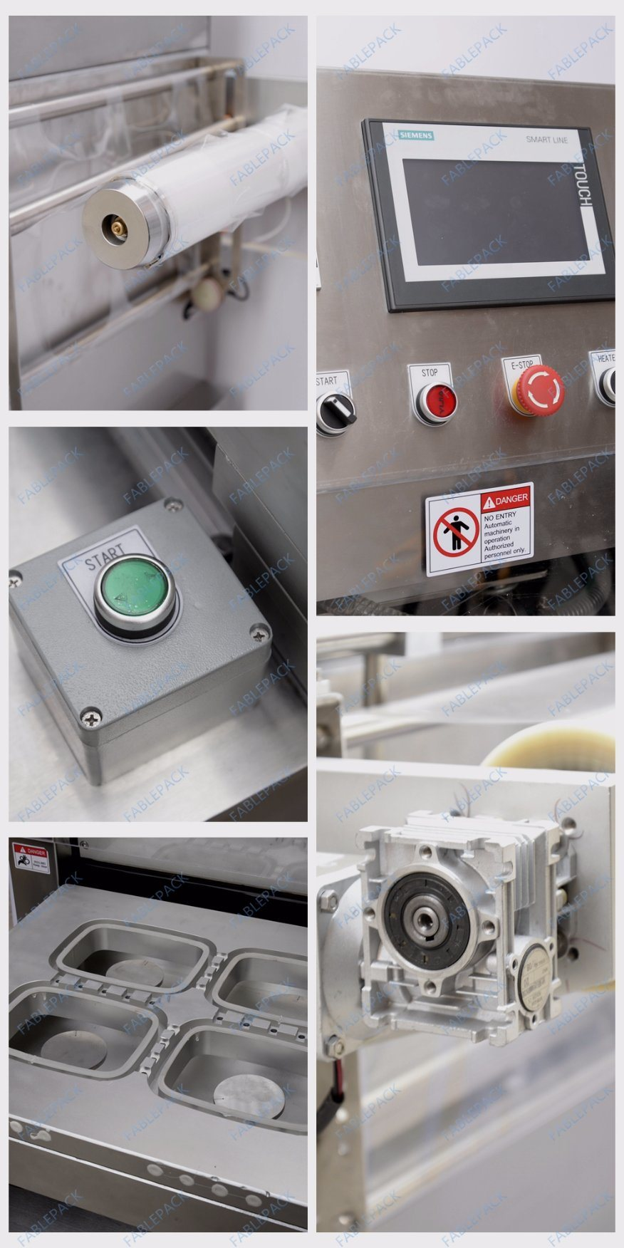Map Tray Sealer for Fresh Foods (FBP-450A)