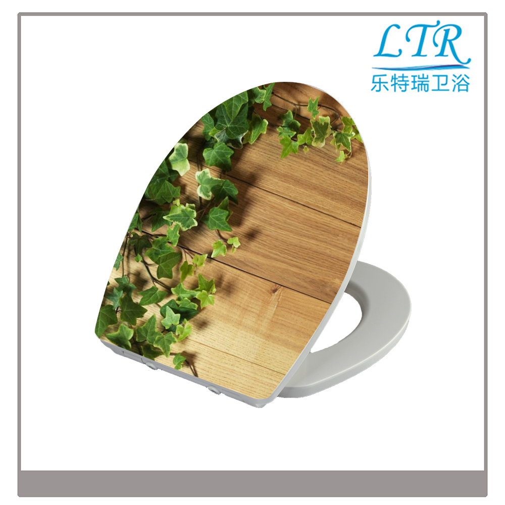 General Shaped Funny Best Selling Two Piece Wc Softclosing Toilet Seats Cover